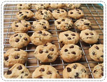 http://pim.in.th/images/all-bakery/chocchip-butter-cookies/chocchip-butter-cookies-01.JPG